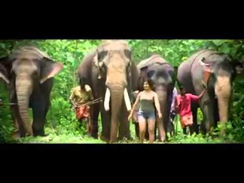 PATHANAMTHITTA the real GODS OWN COUNTRY of KERALA
