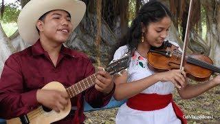 Ensayando El Caballito los Tríos Temple Huasteco y Flor de Madera de Tihuatlán, Ver.