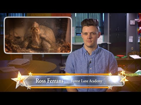 Ross Ferrans - 2018 STARS Teacher - Forest Lane Academy