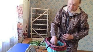 видео Когда собирать мяту и иван-чай для сушки на зиму хранение сроки. Подробные данные на 25 декабря 2017 г.