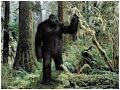 Debunking Cryptozoology #5: Bigfoot (RE-UPLOAD)