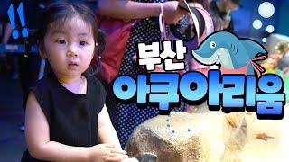 [vlog#6]아빠의육아일기/부산아쿠아리움 박살내기