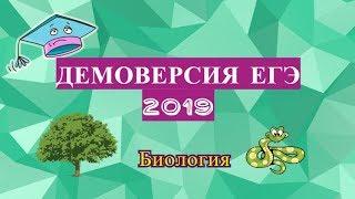 ДЕМОВЕРСИЯ ЕГЭ БИОЛОГИЯ 2019