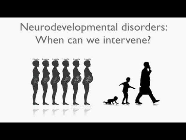 Mechanisms and Adult Treatments for Neurodevelopmental Disorders