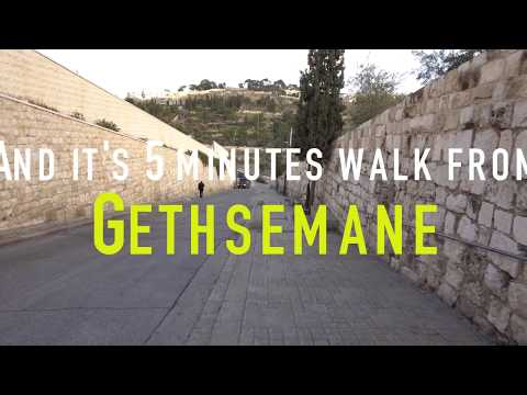 Via Dolorosa and Gethsemane Garden