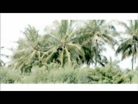 Joyce Blessing - I Surrender (Official Video)
