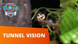 PAW Patrol | Tunnel Vision | Toy Episode | PAW Patrol Official & Friends