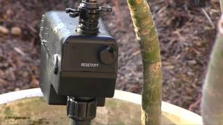 How to keep animals out of your garden - the Scarecrow Sprinkler review