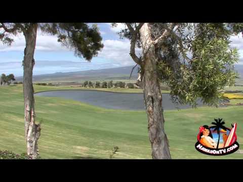 The King Kamehameha Golf Club - Michael H. Lyons II - 2011 Palaka Award