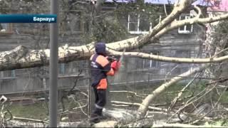 видео Официальный сайт Завьяловского района Алтайского края