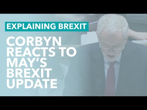 Corbyn's Reaction to May's Brexit Update - Brexit Explained