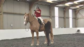 Gill and Pearl rising trot