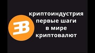 Первые шаги в мире криптовалют