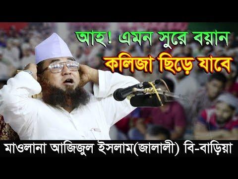 Maulana Azizul Islam Jalali Bangla Waz 2018 যে সুরেতে হার মানে কোকিলের সুর