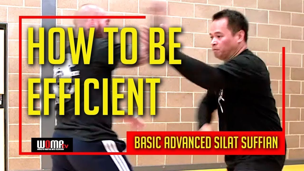 Download HOW TO BE EFFICIENT In BASIC ADVANCED SILAT