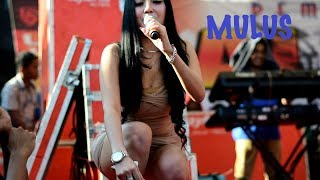 Download lagu MULUSNYA AYU VAGANZA BIKIN MELOTOT SAYANG 3LIQUID STAR RANDU ALAS MP3