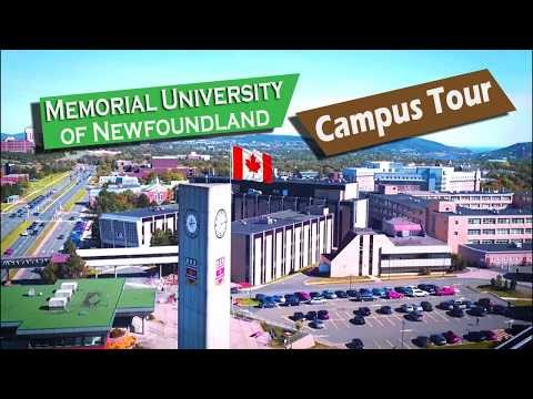 Cheapest University In Canada For International students | Memorial University Of Newfoundland