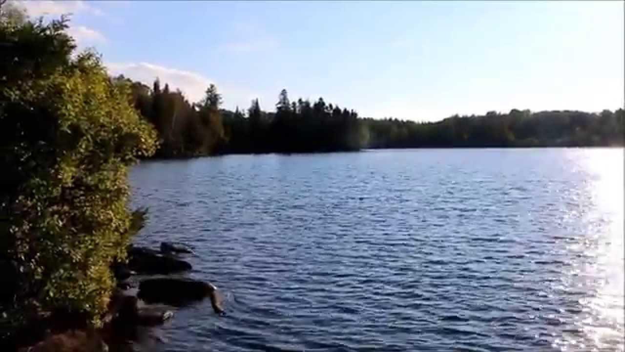 Visite Video Reserve Du Lac Paquet A Riviere Rouge