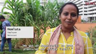 Full time IT employees are turning part time gardeners in Bengaluru!
