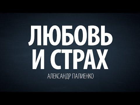 Любовь и страх. Александр Палиенко.