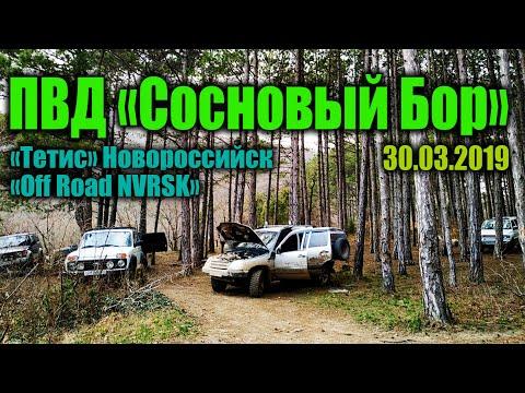 СОСНОВЫЙ БОР 30марта2019