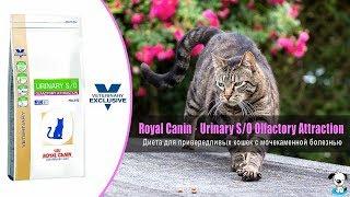 Диета для привередливых кошек при мочекаменной болезни · Royal Canin Urinary SO Olfactory Attraction