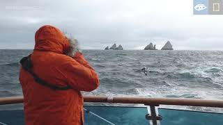 Shag Rocks | Antarctica | Lindblad Expeditions-National Geographic