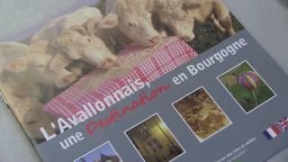 C'est l'été à Avallon ! Office de Tourisme d'Avallon