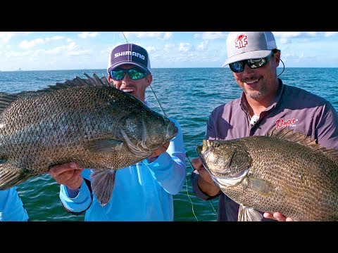 Fishing For Monster Tripletail Fish - Ft. Scott Martin - 4K