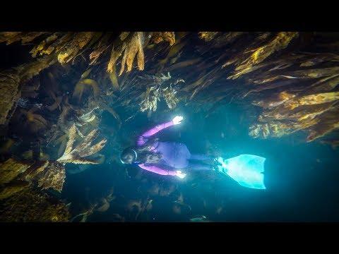 Freediving  |  1080p HD  |  GoPro  |  Penberth Cove