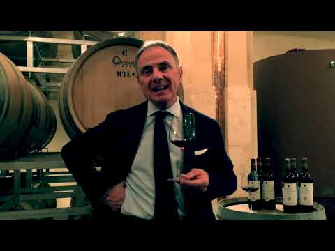 wine article Andrea Cecchi In The Wine Cellars