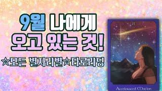 타로카드 ☆모든 별자리별 타로리딩☆ 지금 나에게 오고 있는 것은?