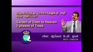 ஏதேனிலிருந்து பரலோகத்திற்கு வழி எந்த தோட்டம்? Garden of Eden to Heaven 3 phases of Trees