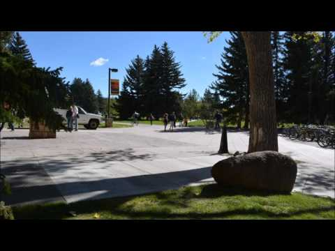 University of Wyoming Campus Times Lap