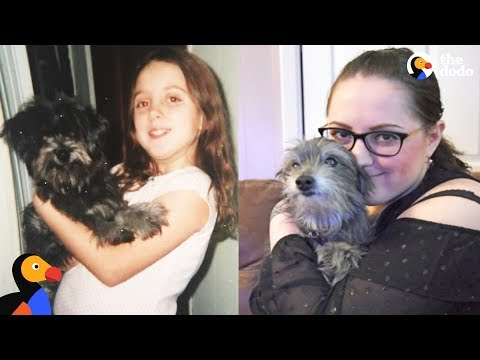 Woman Reunites With Childhood Dog and Adopts Him | The Dodo