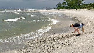 Robb's Wednesday Morning Beach Walk in North Naples, Florida 10/10/18