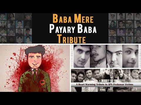 Baba Mere Pyare Baba - APS Tribute Song