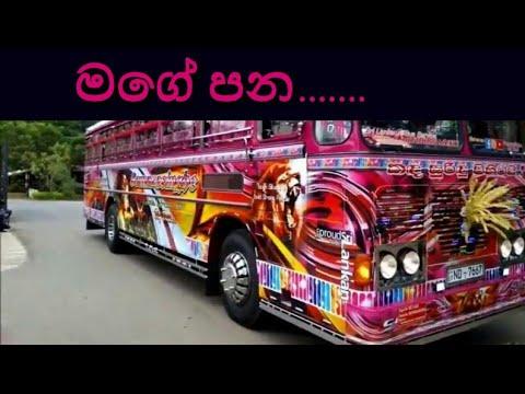 Mage Pana /sudu  2 Bus Horn /Sri Lankan Super  Bus / Sri Lankan Super Bus Air Horn /sudu Song