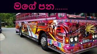Gambar cover mage pana /sudu  2 bus horn /Sri lankan super  bus / Sri Lankan super bus air horn /sudu song