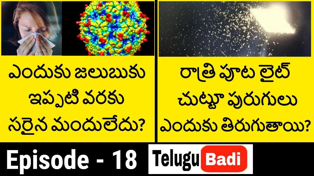 Ask Telugu Badi Episode 18   Most Interesting Questions and Answers in Telugu   Telugu Badi
