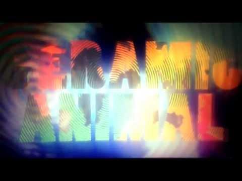 CERAMIC ANIMAL - Edgy (Audio)