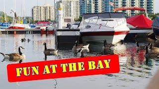 things you might see in barrie ontario kempenfelt bay by hvp