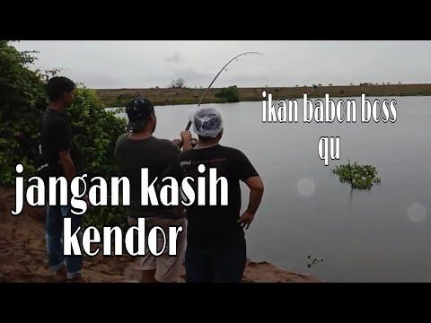 SPOT MANCING PALING BAGUS IKAN NYA BABON-BABON SEMUA - YouTube
