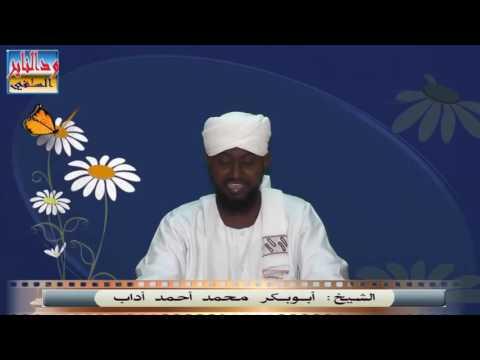 كذب محمد مصطفى علي العلماء الراسخين - الشيخ أبوبكر آداب  حفظه الله thumbnail
