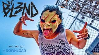 DJ BL3ND - WILD MIX 2014