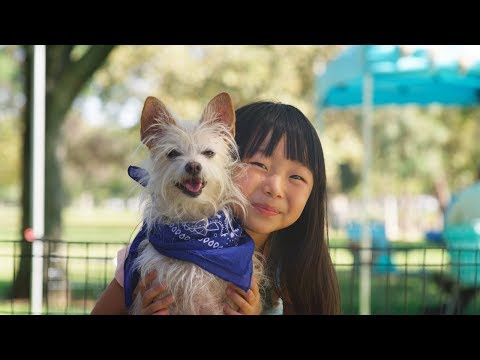 Subaru Share the Love Event   Subaru Commercial   New Friends