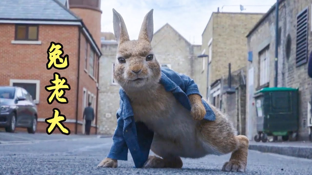 小兔子为了找到兔生的意义,独自出来流浪,喜剧动物电影