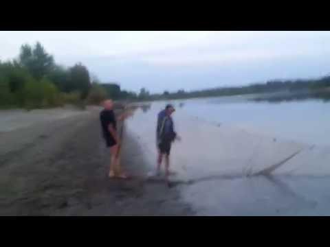 Как поймать карпа — Секреты успешной рыбалки