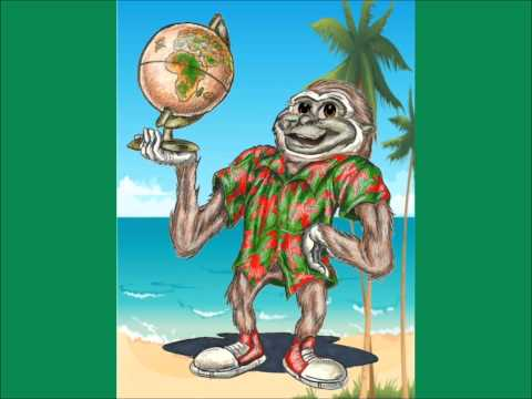 Learn about Hawaii with Gordie Gibbon