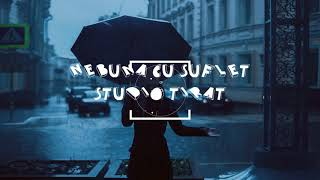 Instrumental Hip Hop Romania Suflet Nebun (Instrumental Remix Hip Hop) STUDIO TIRAT